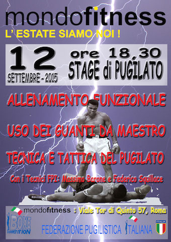 stage-12-9 copia